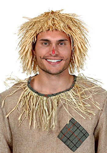 FunCostumes Scarecrow Wig (Halloween Scarecrow Makeup)