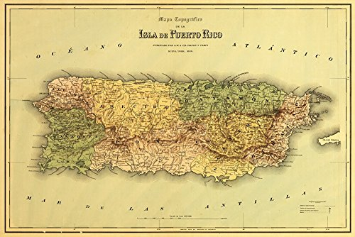 Puerto Rico - (1886) - Panoramic Map (12x18 Art Print, Wall Decor Travel Poster)