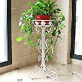 LQQGXL Iron flower stand single green orchid floor orchid frame indoor and outdoor European living room balcony folding flower stand C Flower stand ( Color : White )