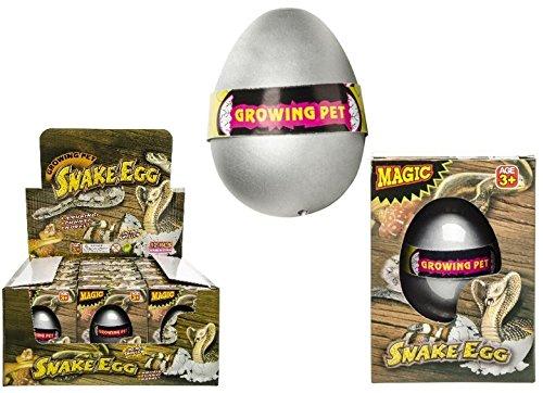 1x wachsende Schlange im Ei, Schlangenei, schlüpfende Schlange, in Schachtel verpackt schlüpfende Schlange LG-Imports