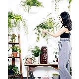 WallGro Eco Vertical Garden Wall Planter 4 Pack