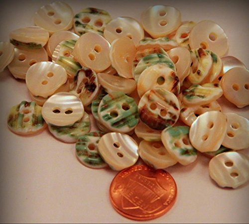 Of Mother Mop 12mm Pearl (12 Small Curved Thick Cream Green MOP Mother of Pearl Buttons 1/2