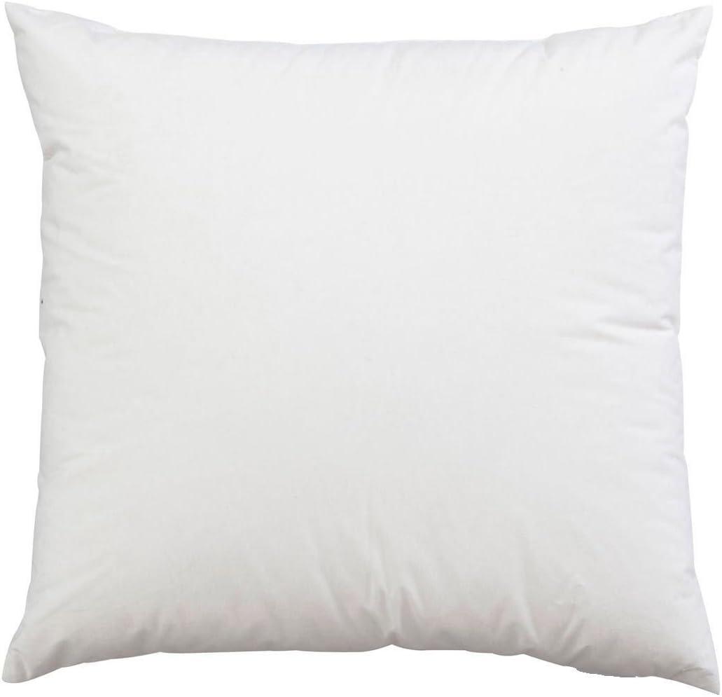 Coussin Int/érieur Blanc, Lot de 2 35 x 35 cm | 14 x 14 Utopia Bedding Coussins de Garnissage Housse en Polycotton