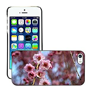 Hot Style Cell Phone PC Hard Case Cover // M00307817 Cherry Blossom Flowers Nature Pink // Apple iPhone 5 5S 5G