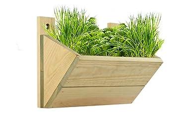 macetero de una para colgar en la pared para cultivar o