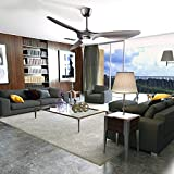 reiga 52-in Ceiling Fan with LED Light Kit Remote