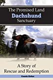 The Promised Land Dachshund Sanctaury