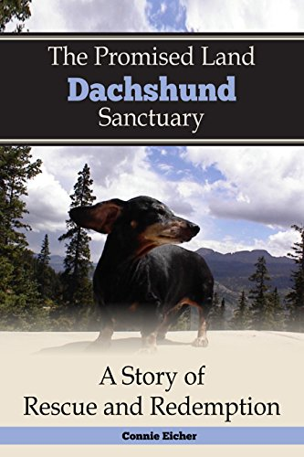 The Promised Land Dachshund Sanctaury: A Story of Rescue and Redemption