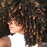 Goodly Short Afro Curly Wigs with Bangs for Women 2 Tone Ombre Dark Brown Kinky Curly Hair Wig for Black Women Synthetic Heat Resistant Full Wigs (Ombre Brown)
