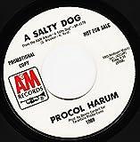 A SALTY DOG / A SALTY DOG (7