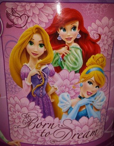 Disney Princess Micro Raschel Throw,