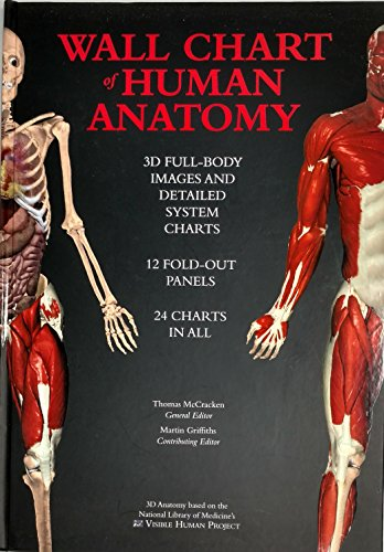 Wall Chart Of Human Anatomy - 3d Dull-body Images And Detailed System Charts