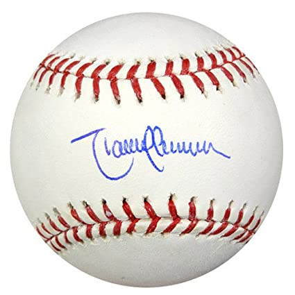 1650ff59189 Image Unavailable. Image not available for. Color  Randy Johnson Signed Rawlings  Official Major League Baseball ...