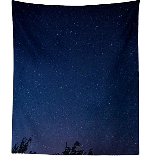 Estrella Hanging Outdoor (Westlake Art - Wall Hanging Tapestry - Sky Stars - Photography Home Decor Living Room - 26x36in)