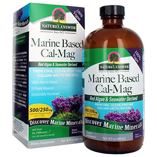 Nature's Answer Marine Based Calcium Magnesium, Vanilla Cream, 16-Ounce