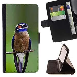 - Queen Pattern FOR Apple Iphone 5 / 5S /La identificaci????n del cr????dito ranuras para tarjetas tir????n de la caja Cartera de cuero cubie - blue bird songbird green branch fea