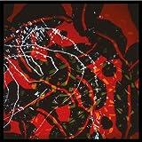 Nerve Net 2 CD