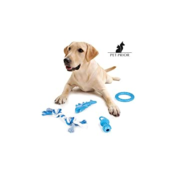 Pet Juguetes Perros Para 4Amazon De esProductos Priorpack N80wnm