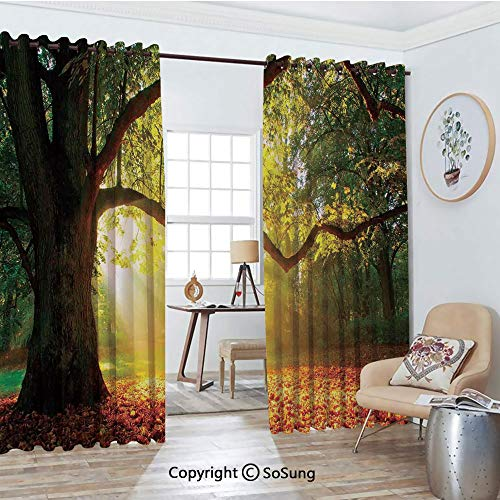 Blackout Window Curtains,Majestic Mighty Oak Tree with Largely Broader Leaves Forest Sun Rays Nature Living Room Bedroom Thermal Insulated Window Drapes 2 Panel Set, 54