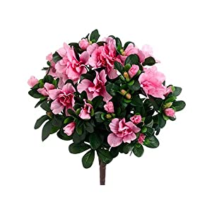 "14"" Azalea Bush x5 Pink (pack of 12) 10"