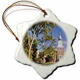 Funny Christmas Snowflake Ornaments Education Dartmouth College New Hampshire Jerry And Marcy Monkman Holiday Xmas Tree Hanging Ornaments Decoration Gifts