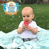 INNOBABY TEETHIN' Smart Birthstone Ring TEETHER - June (Alexandrite)