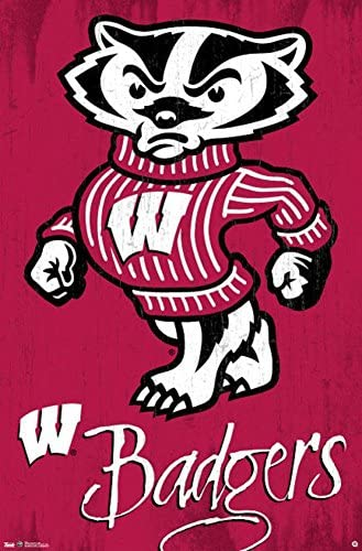 NCAA Wisconsin Badgers Mini Mirror with Clip