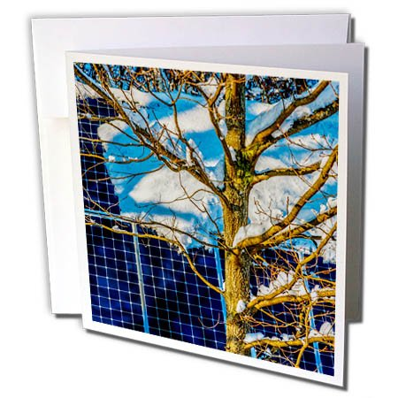 3dRose Alexis Photography - Objects - Young Oak Tree and a Snow Covered Solar Power Panel in Winter Park - 1 Greeting Card with Envelope (gc_280888_5) -