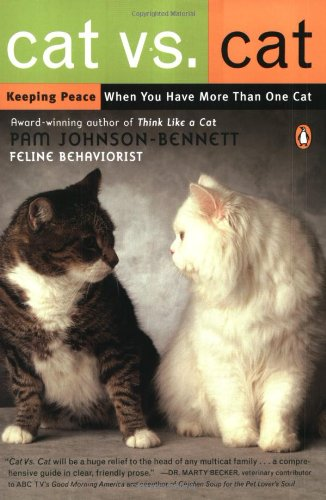 Cat Vs. Cat Keeping Peace When You Have More Than One Cat