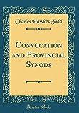 Convocation and Provincial Synods (Classic Reprint)