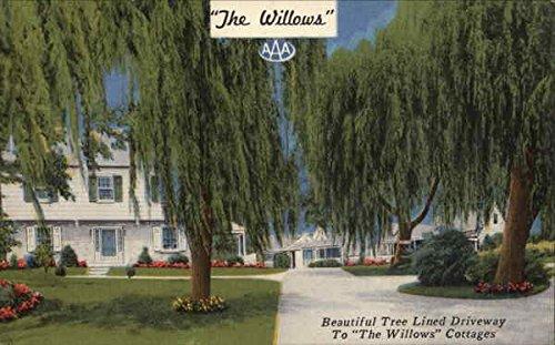 Williams Cottage - 4