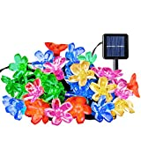 Ecandy Outdoor Solar String Lights 21ft 50 Led Blossom Flower Fairy Light for Garden Patio Wedding Party Bedroom Christmas Decoration,Multi-color