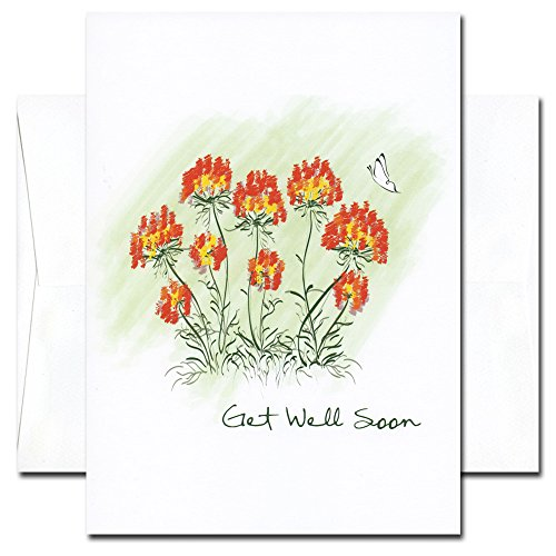 Get Well Cards: Butterfly - box of 10 cards & envelopes