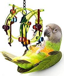 Acrylic Activity Play Tunnel Small Bird Toy with Jingle Bell by Avianweb