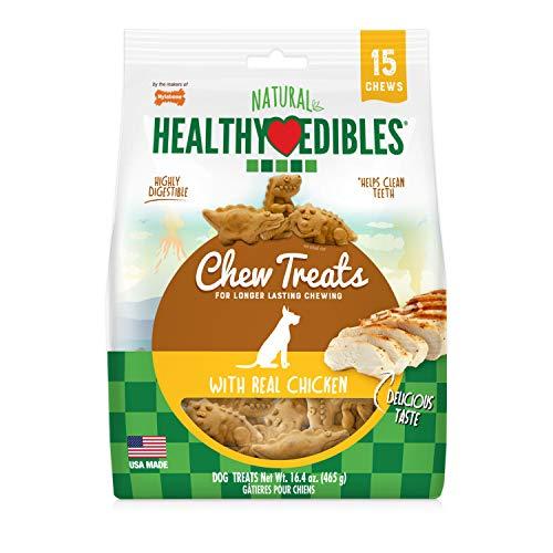 Nylabone Healthy Edibles Dino Dudes Natural Long Lasting Dog Chew Treats, Chicken, 15 Count,
