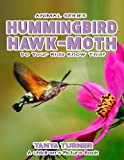 HUMMINGBIRD HAWK-MOTH Do Your Kids Know This?: A Children's Picture Book (Amazing Creature Series) (Volume 53)