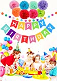 Happy Birthday Decorations Banner With Tissue Pom Poms For Rainbow Birthday Party Supplies