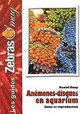 Les Anémones Disques en aquarium: Soins et reproduction