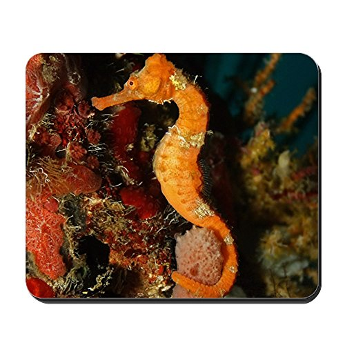 Mousepad (Mouse Pad) Seahorse Holding Coral