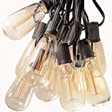 Hometown Evolution, Inc. 100 Foot ST40 Lantern Edison Patio String Lights with Clear Bulbs and Black Wire