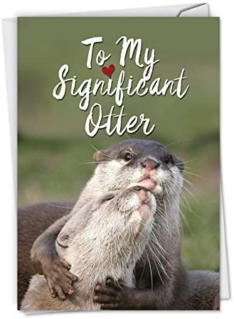 C5528ANG Significant Otters Hilarious Anniversary