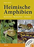 Heimische Amphibien: Bestimmen - Beobachten - Schützen