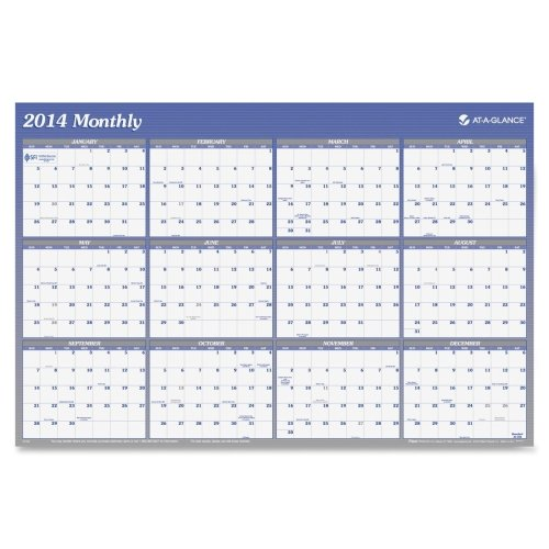 (AT-A-GLANCE Visual Organizer Vertical/Horizontal Erasable Wall Planner, Large Wall, Blue, 2013 (A1102-13))