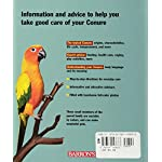 Conures (Complete Pet Owner's Manual) 5