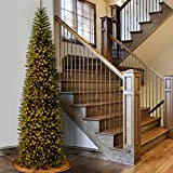 National Tree 12 Foot Kingswood Fir Pencil