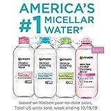 Garnier SkinActive Micellar Cleansing Water, For