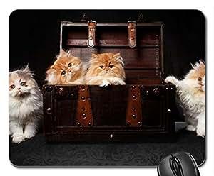 4Cute Cool Decorative Design Animal Cat Mousepad Rainbow Designs