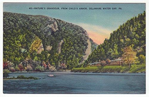 (Child's Arbor, Delaware Water Gap, Pennsylvania Vintage Original Postcard #1206 - June 11, 1943)