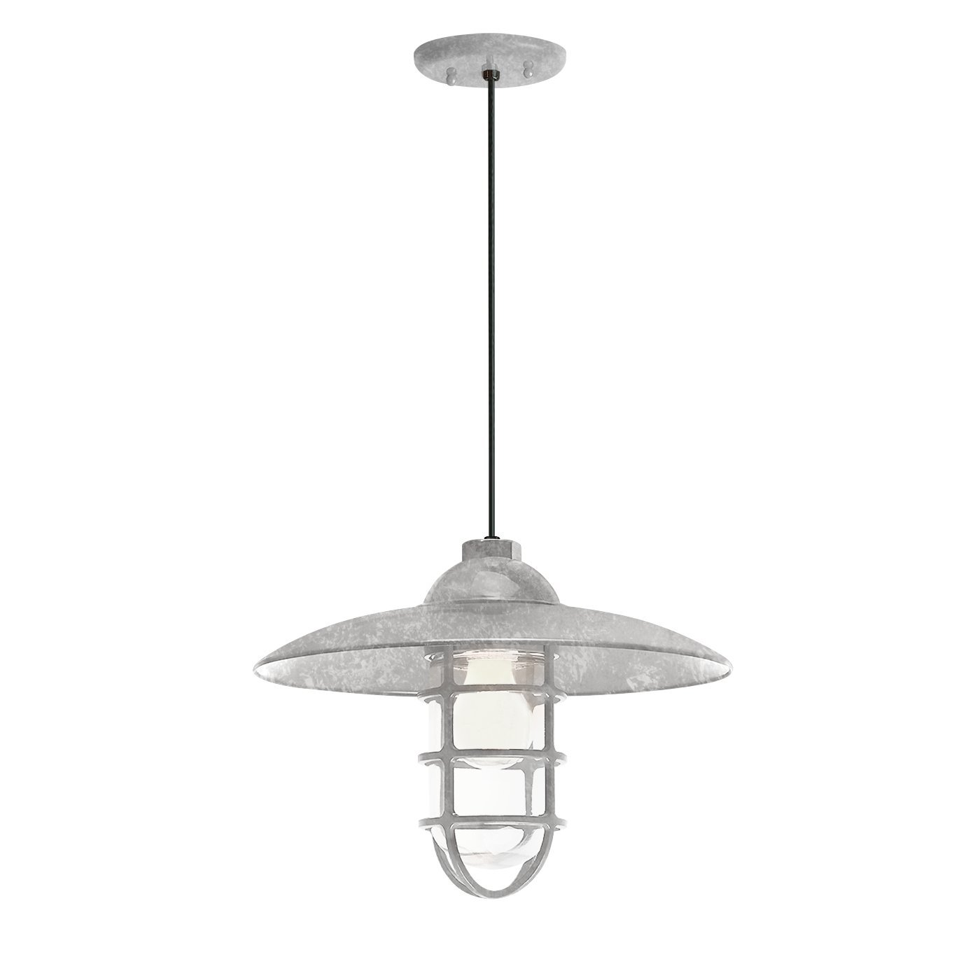 Troy RLM 5DRID13MGA-BC Retro Industrial Dome Outdoor Pendant with Wire Guard, Galvanized by Troy RLM