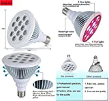 Plant LED Grow Light Bulb Lamp Fixture E27 12 Watts Hydroponic Grow Light.Full Red Blue Spectrum.Best for Indoor Outdoor Plants,Flowers,Vegetables,Fruits,Garden Grow Room Lights,GreenHouse,Grow Tents For Sale